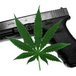 Marijuana and guns